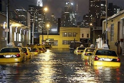 Flooded taxis in Queens, New York. Credit: The Telegraph