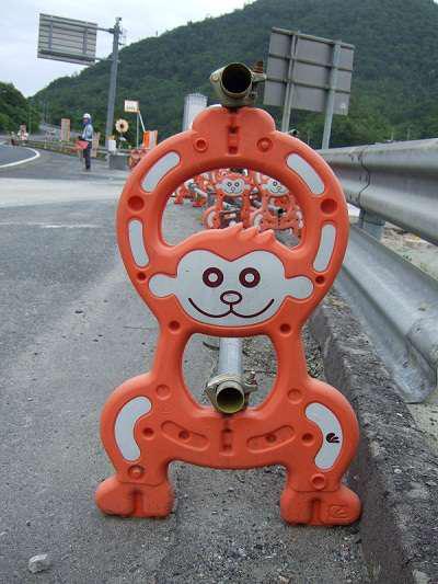 const monkey