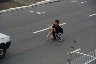 11-year-old Jean Fernandes of Brazil saves a dog that was injured in the road. (Photo: Rafaela Martins via Dog Heirs)