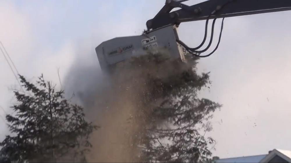 DENIS CMAF excavator forestry mulcher