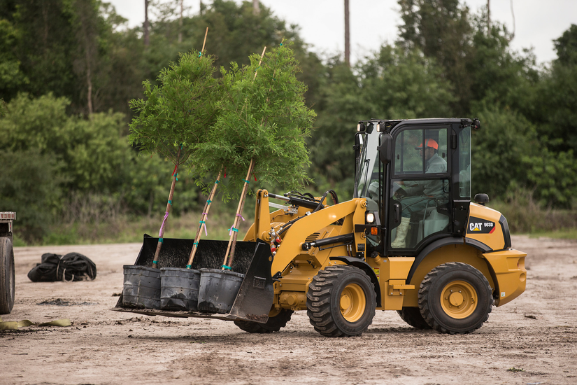 Cat compact wheel loader moving 3 trees in containers