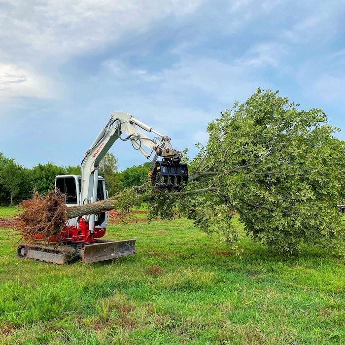 Werk-Brau compact excavator rake holding tree